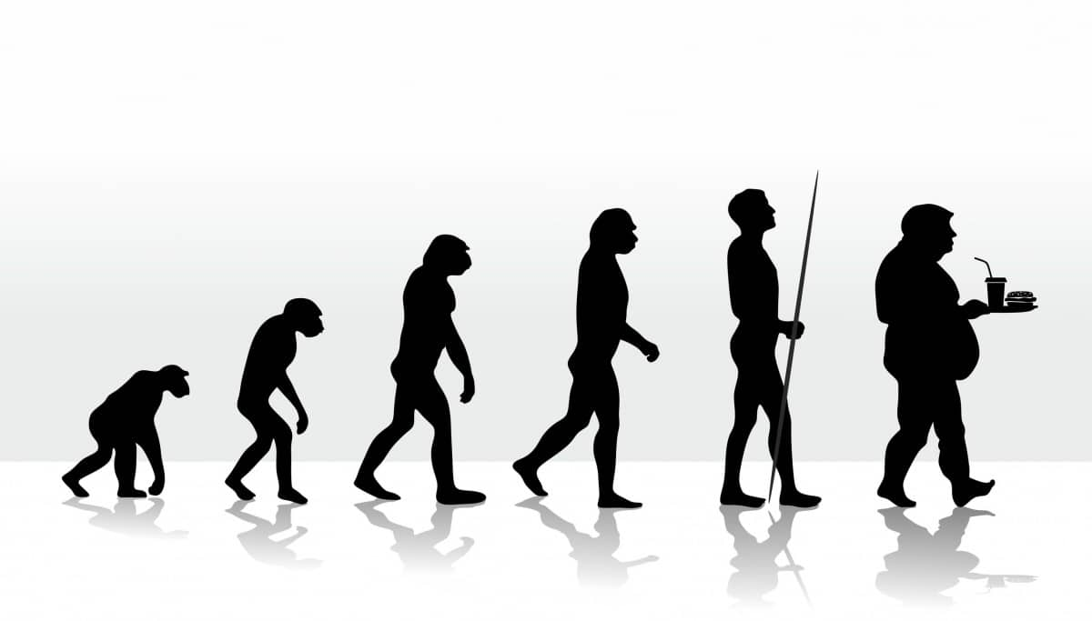 23239476 - illustration of human evolution and eating habits